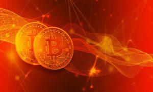 Das ist Bitcoin Evolution im Detail
